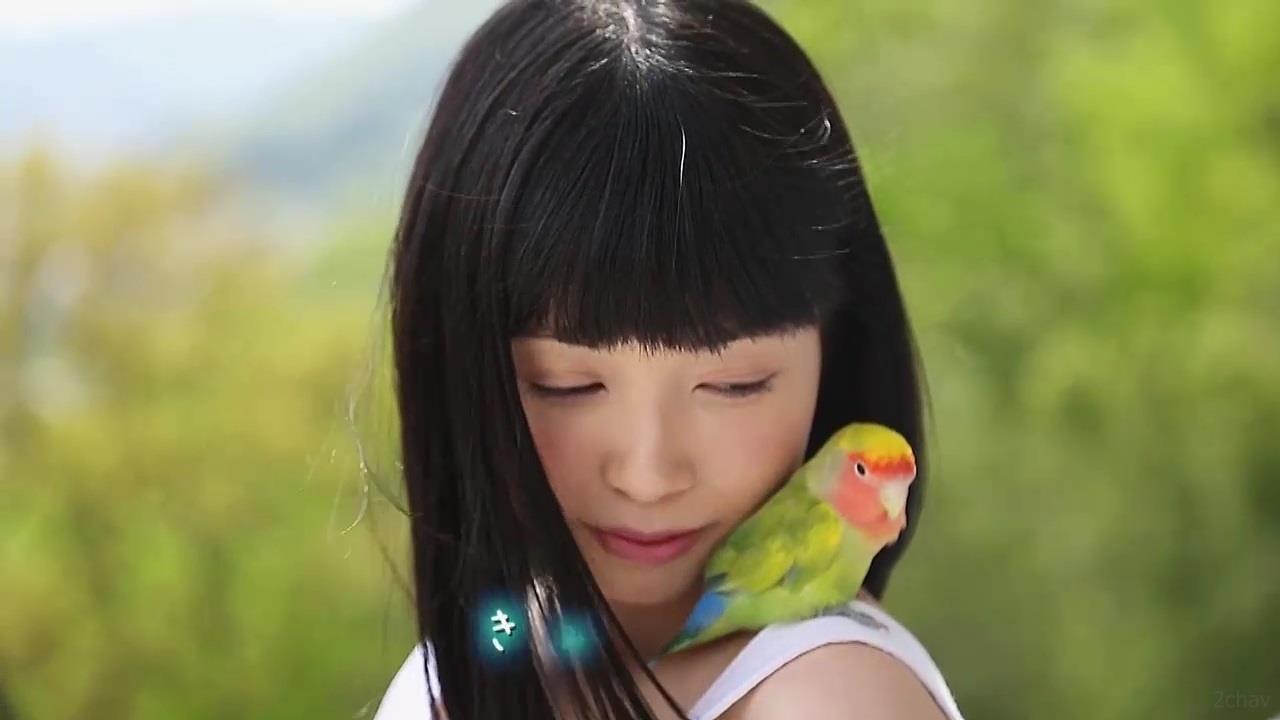 もりの小鳥.mp4_000050450