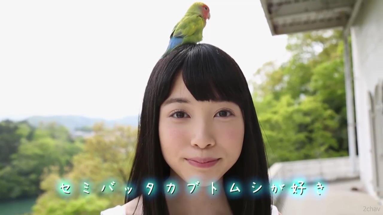 もりの小鳥.mp4_000107040