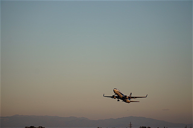 1205空港13