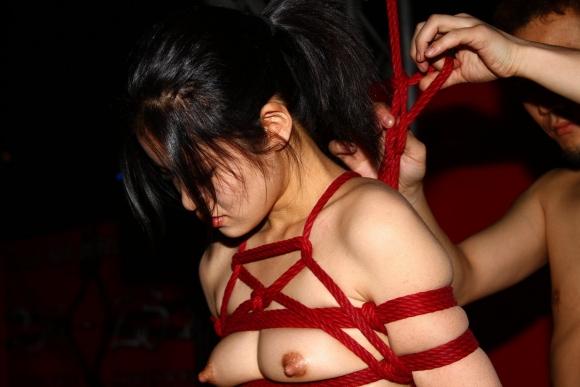【エロ画像】緊縛拘束されると女は簡単に男の玩具となる件wwwwwww05_2015120115091195e.jpg