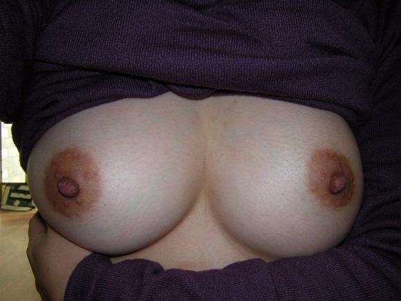 彼女のおっぱいがこんな感じの美乳だったら毎晩揉みまくるわwwwwwww【画像30枚】27_20160525214307617.jpg