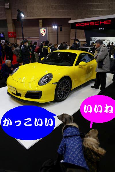 IMG_3680_convert_20151204184324.jpg