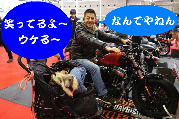 IMG_3891_convert_20151204201631.jpg