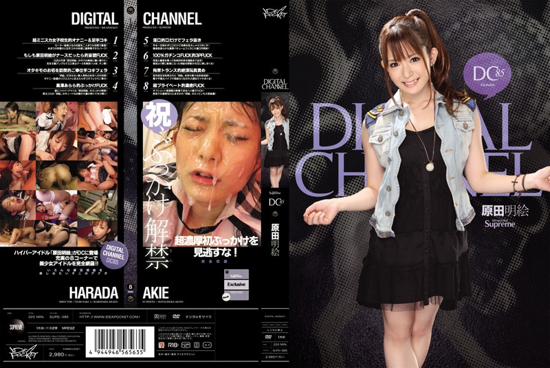 DIGITAL CHANNEL DC85 原田明絵の購入ページへ