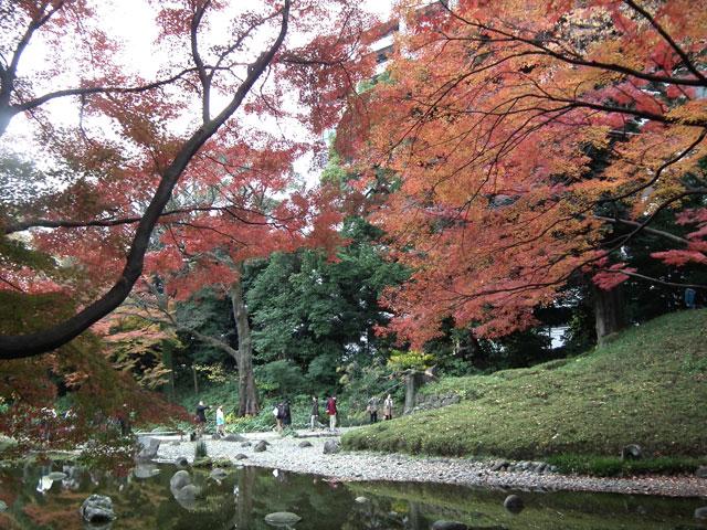 後楽園の紅葉(5)