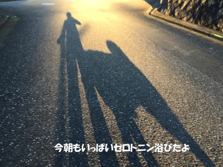 20151130_2.jpg