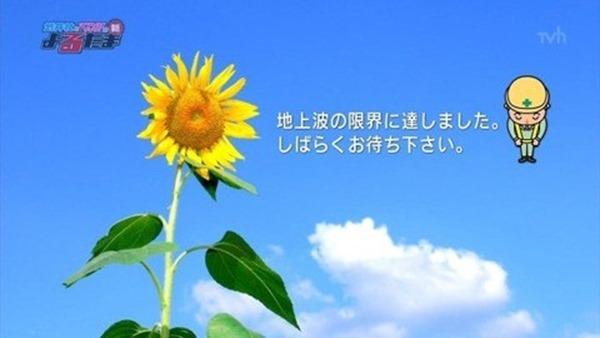 吉沢明歩が擬似フェラ13