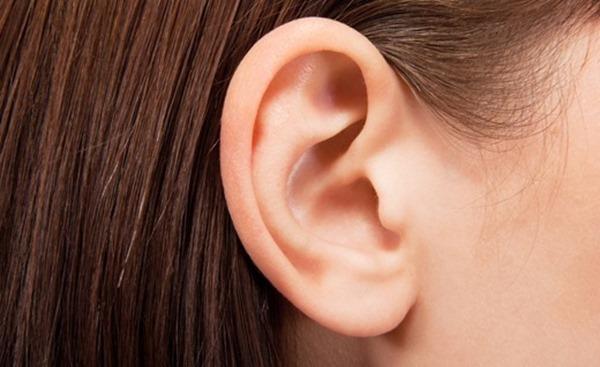 耳フェチ画像20
