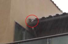 屋根壁の取り合い部?