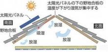 太陽光含水?
