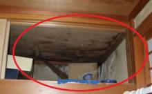 屋上笠木?