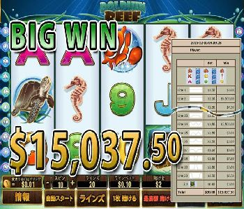 Dolphin-Reef15037linePrize.jpg