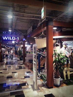 Wild-1お台場