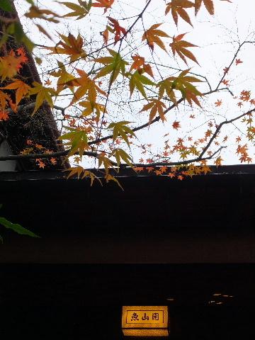 gyozanen0132.jpg