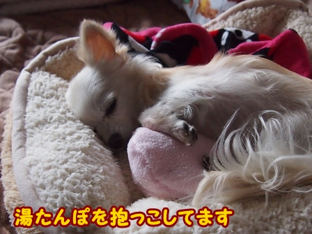 blog7076a.jpg