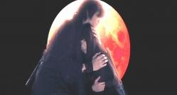 月影をやさしく抱きしめる虎影