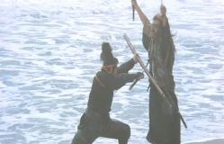武蔵との戦いを制した十兵衛