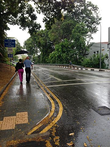 360px-Fort_Canning_Road,_Singapore,_on_a_rainy_day_-_20140316