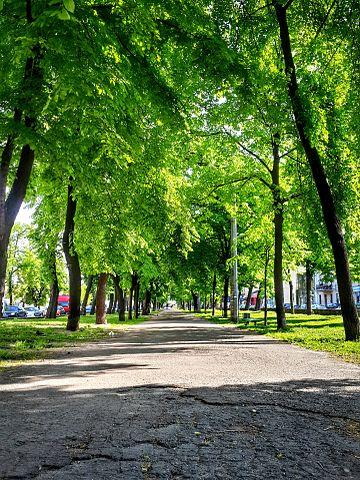 360px-Spring_in_Kyiv_(14083507944).jpg