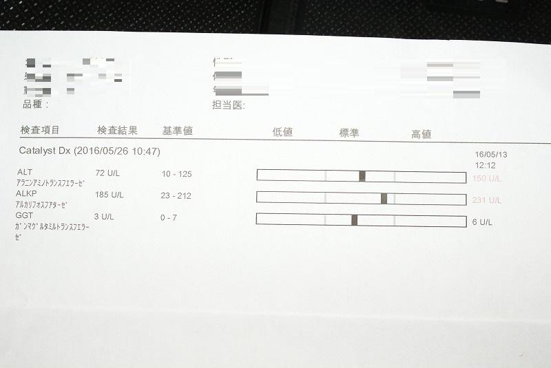 s-DSC06581.jpg