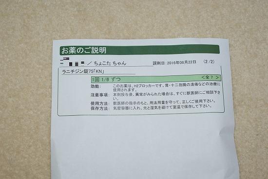 s-DSC06684.jpg