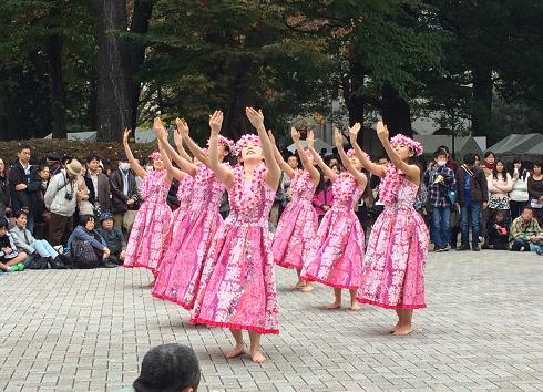 東大駒場祭フラ
