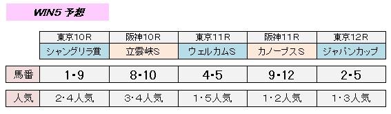 11_29_win5.jpg