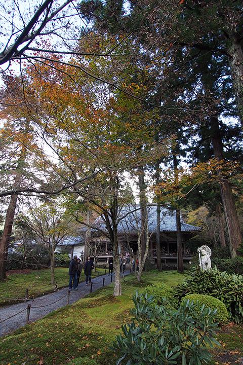 20151115_sanzenin_temple-03.jpg