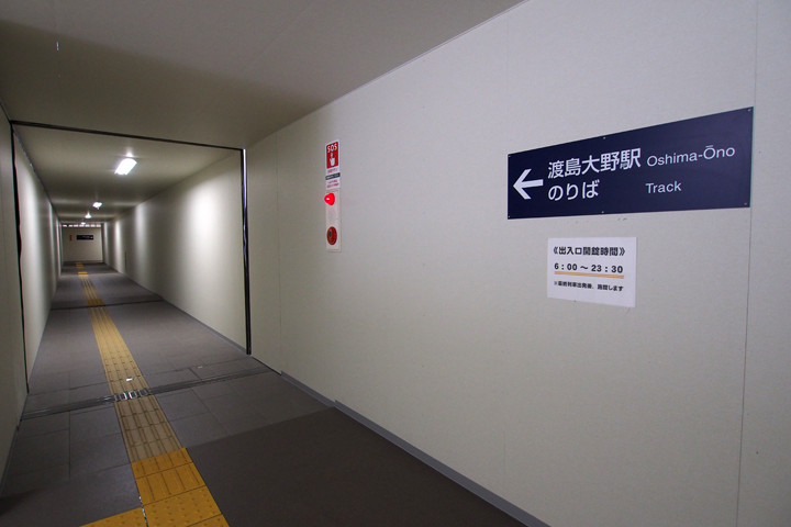 20151122_oshima_ono-26.jpg