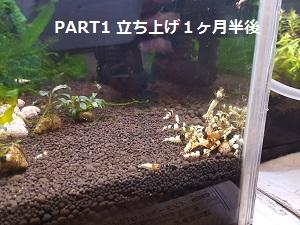 20160428_111214.jpg