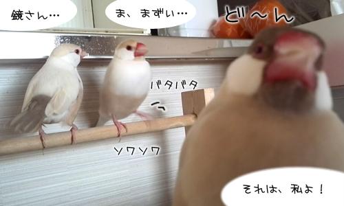 鏡よ、鏡、鏡さん_2