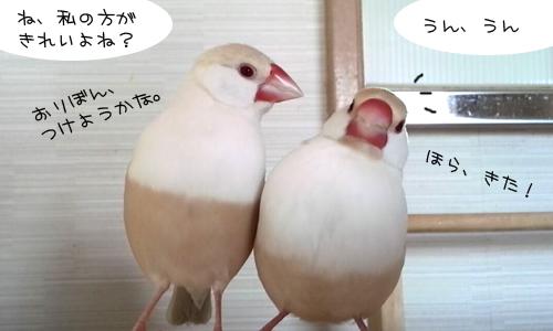 鏡よ、鏡、鏡さん_4