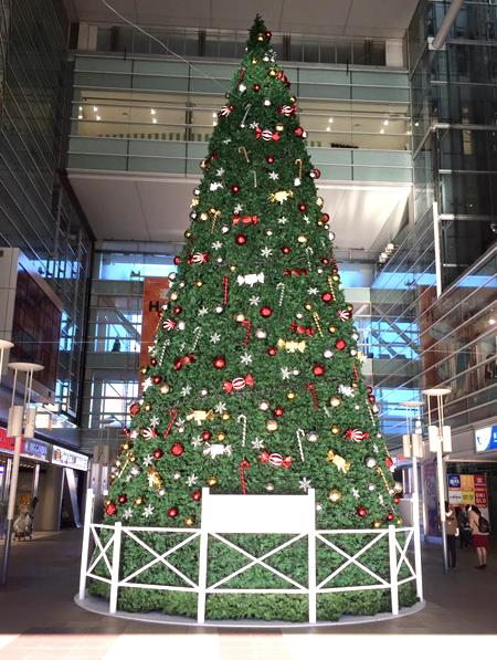 20151127クリスマスツリー①