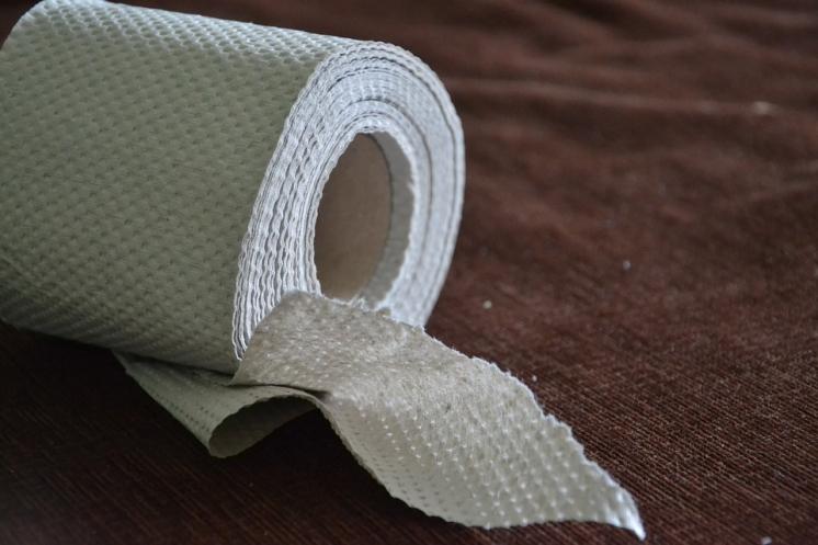 toilet-paper-313820_960_720.jpg