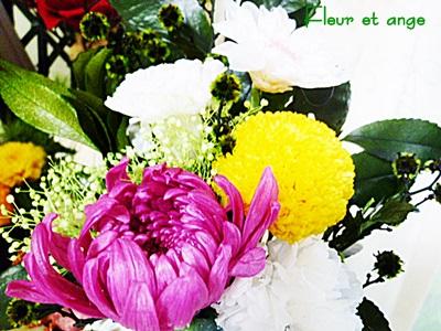 fleur379.jpg