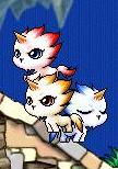 3犬かわいい