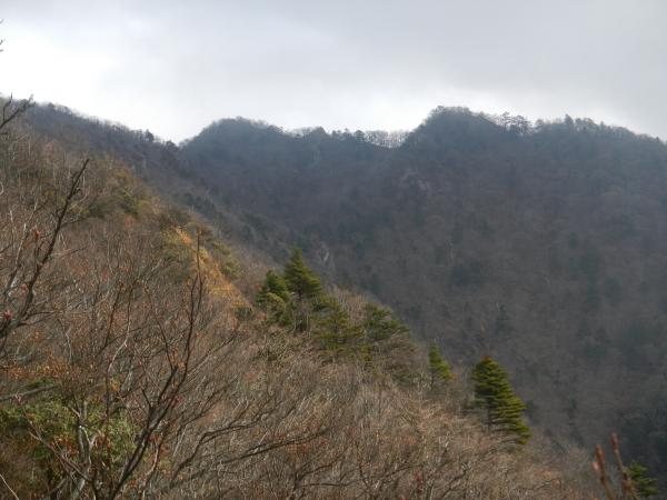 鬼ヶ岳 049