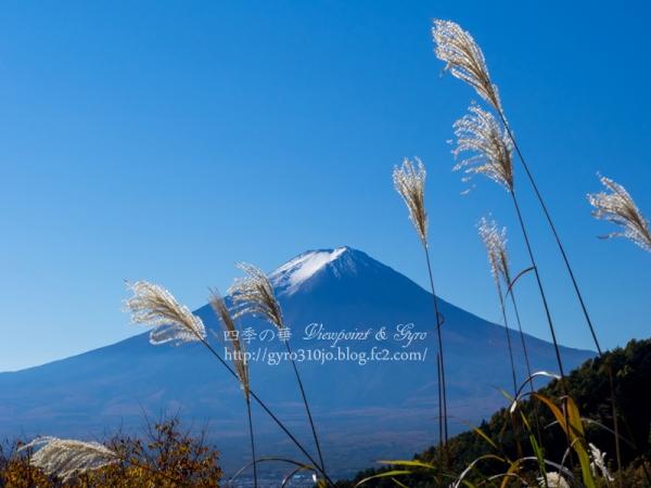 富士山 D