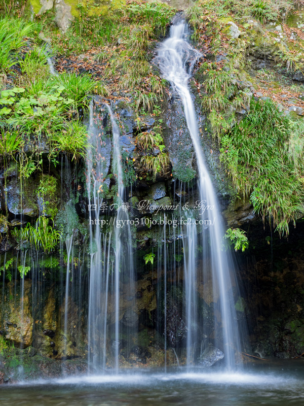 陣馬の滝 C
