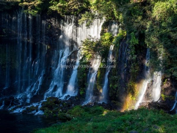 白糸の滝 L