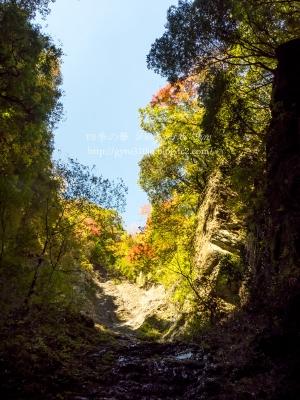 牧馬大滝 F