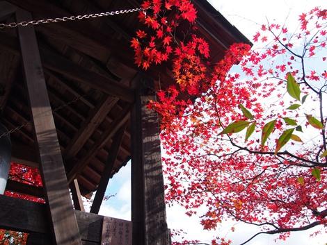 鐘撞き堂と紅葉