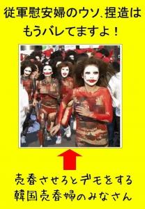 132984370949313220578_ianfu_uso_netsuzo.jpg