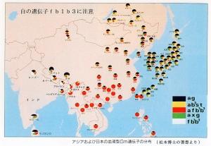 dna_map.jpg