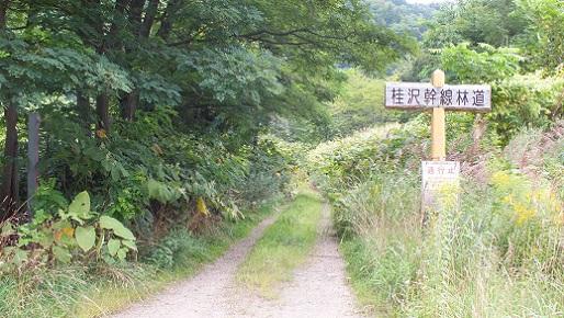三笠の旧橋群 (8)①