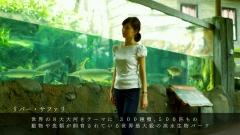 中野美奈子パン線画像7