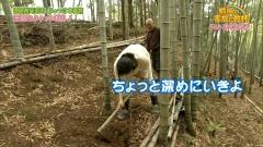 木村多江、尻画像5