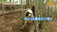 木村多江、尻画像8