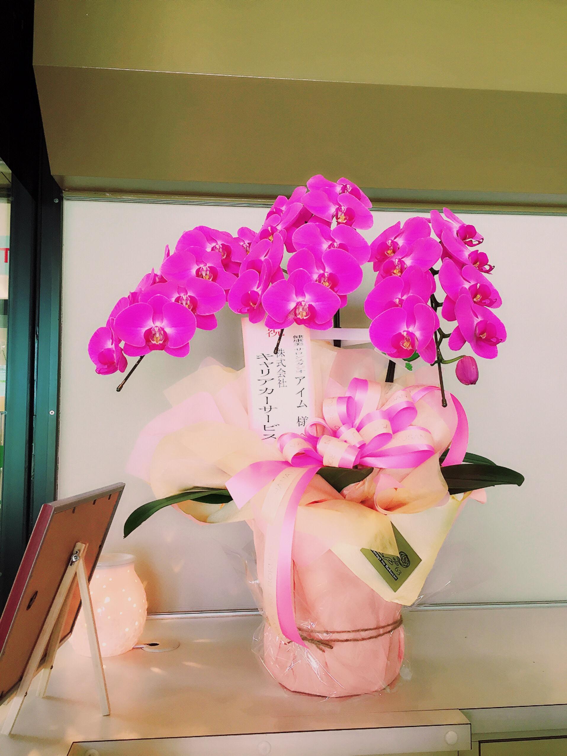 fc2blog_20160802050501a3d.jpg