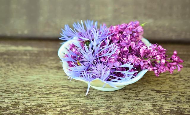 flowers-765757_640.jpg